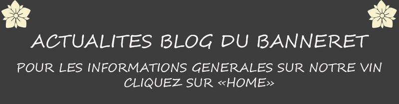 Bandeau Actualités Blog